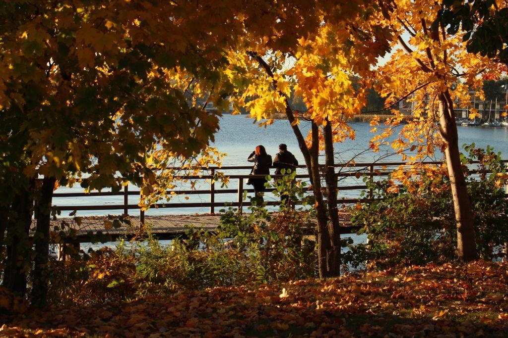 Pärchen auf einer Brücke im Herbst