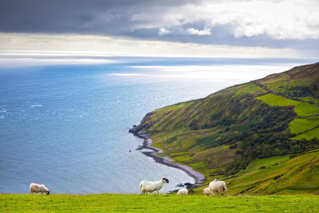 Europe, Ireland