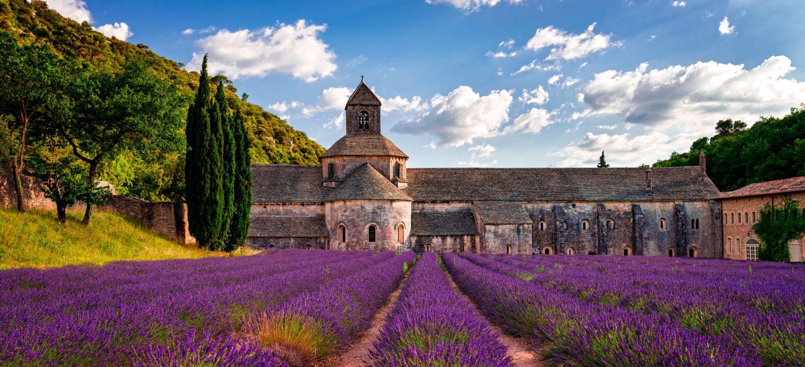 Lavendelfelder und alte Gemäuer in Frankreich