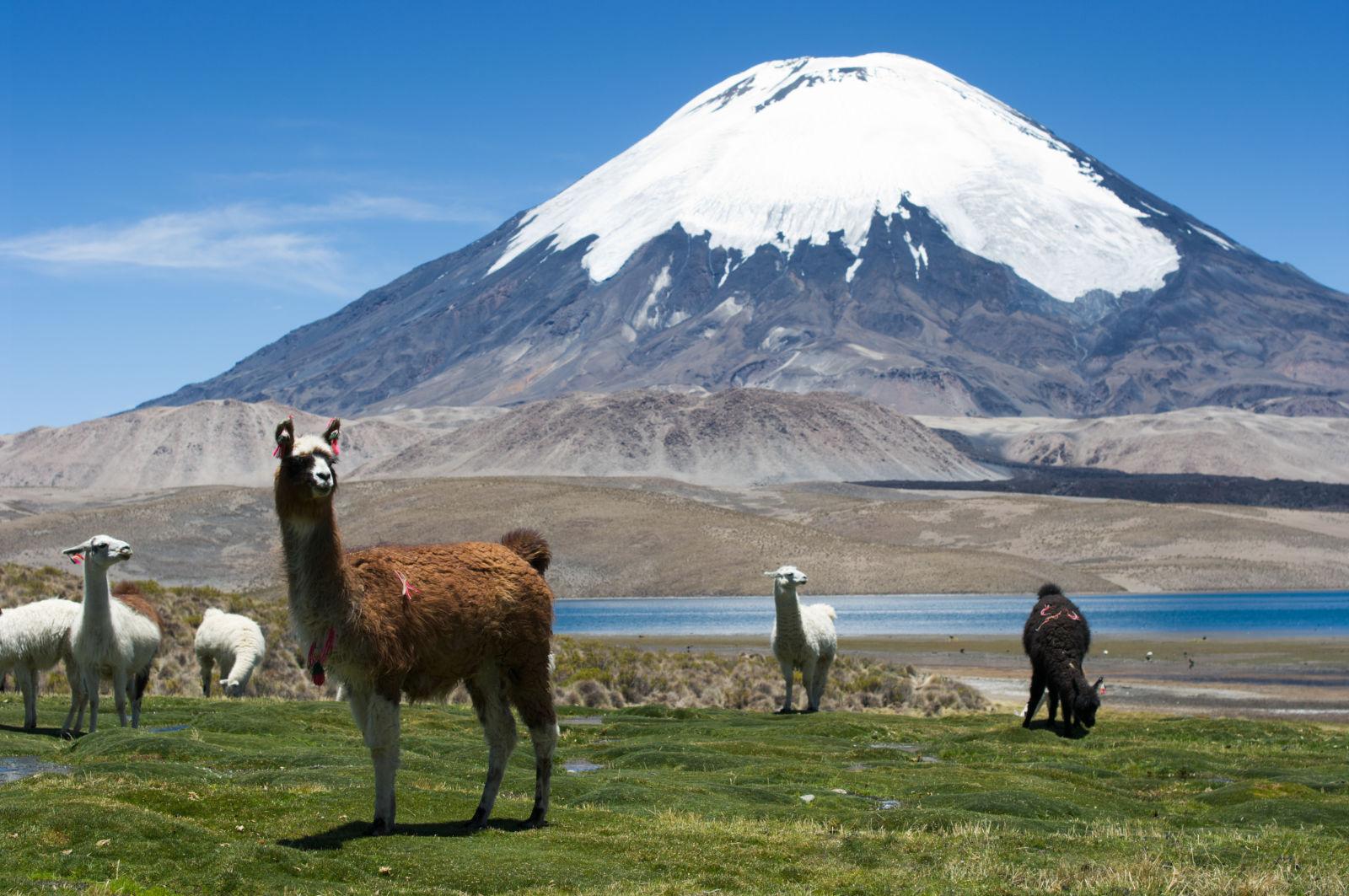 Chile, Parinacota, Provincia de Parinacota