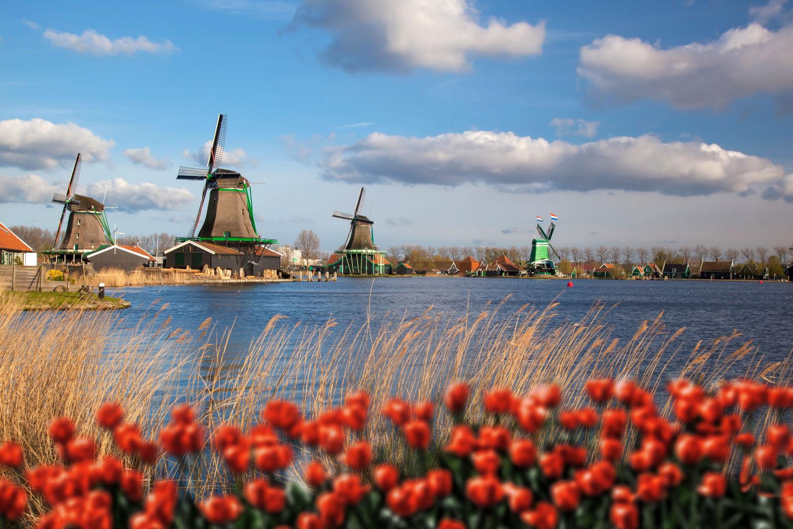 Kinderdijk niederlande windmühlen