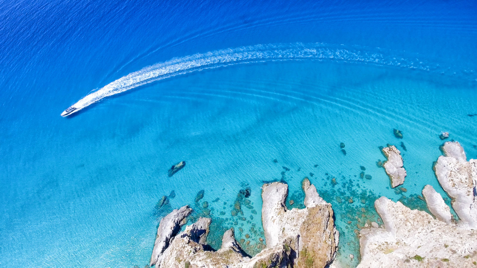 Animal, Beach, Calabria