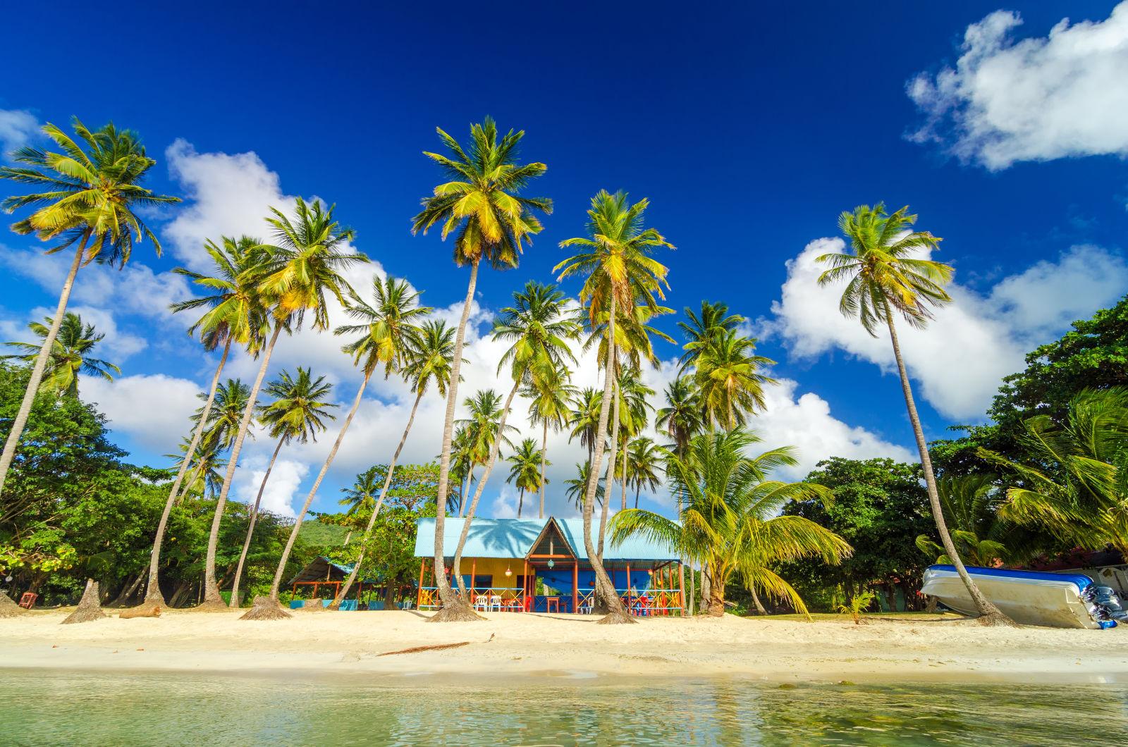 Bunte Hütte umgeben von Palmenan einem Strand in San Andrés, Kolumbien