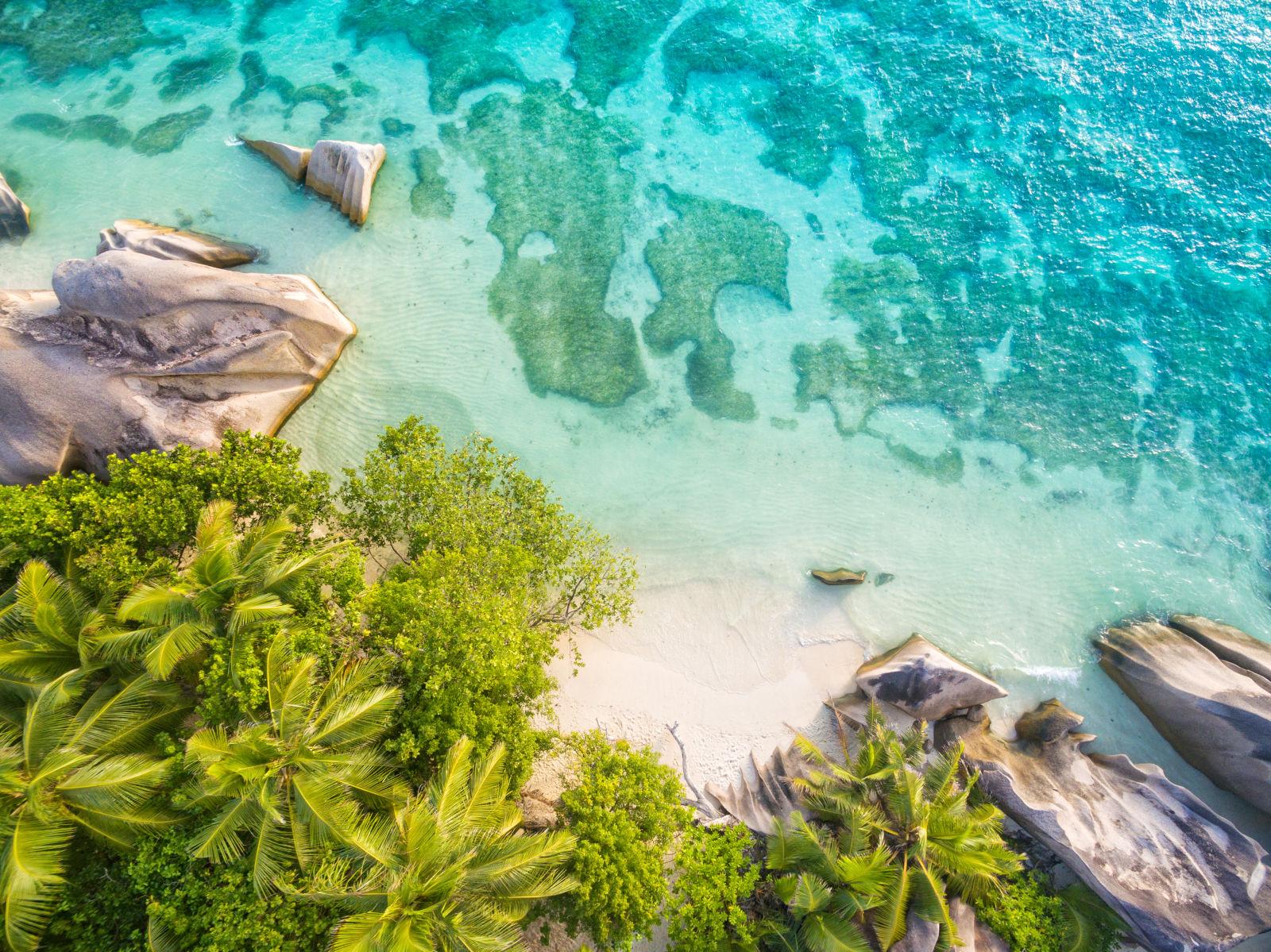 Foto von oben seychellen palmen strand meer