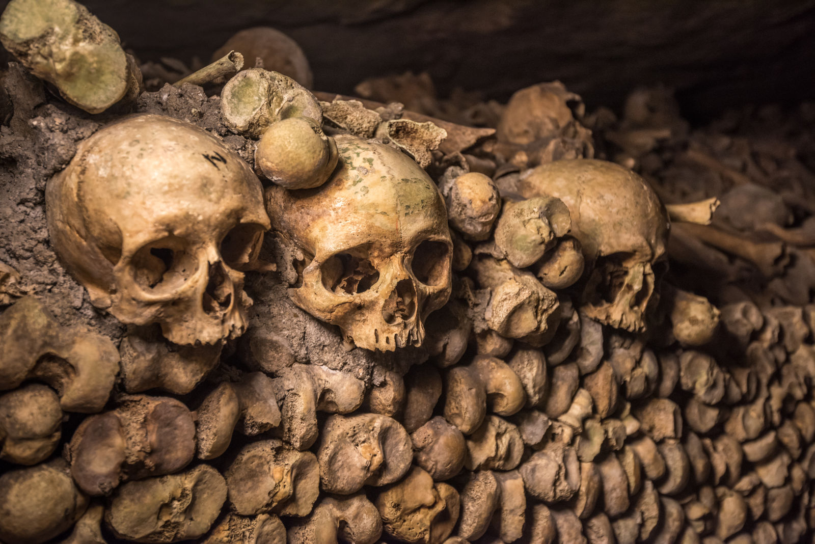 Catacombs of Paris, Europe, France