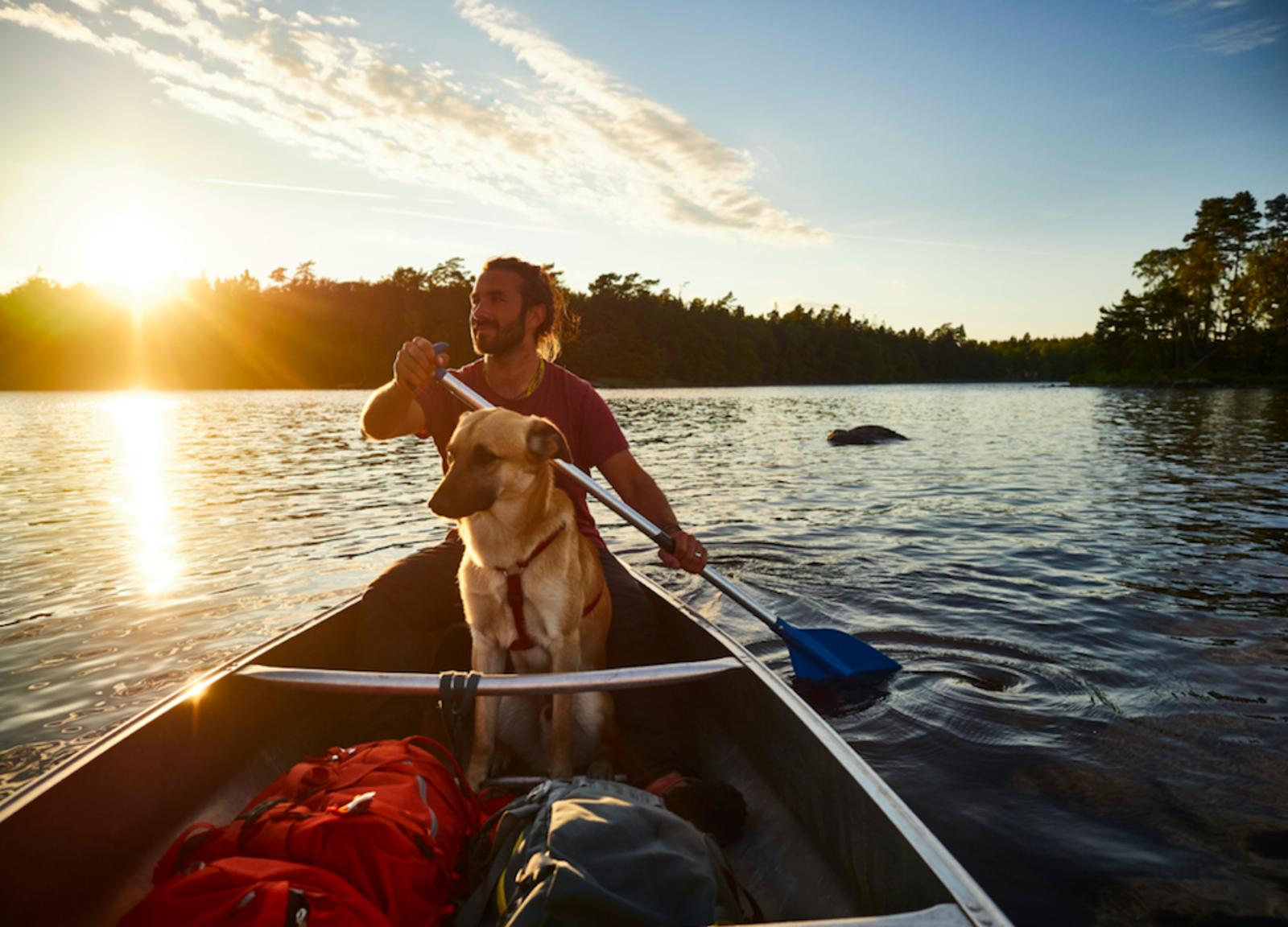 Kanu fahren mit Hund in Schweden