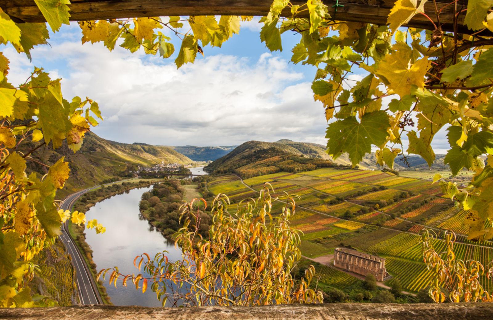 Eifel autumn