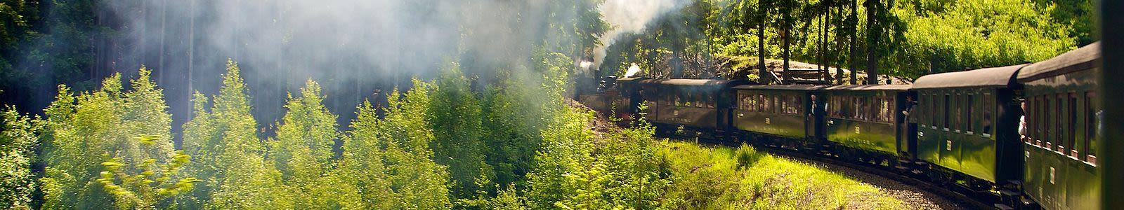 Bahn durch den Harzer Wald