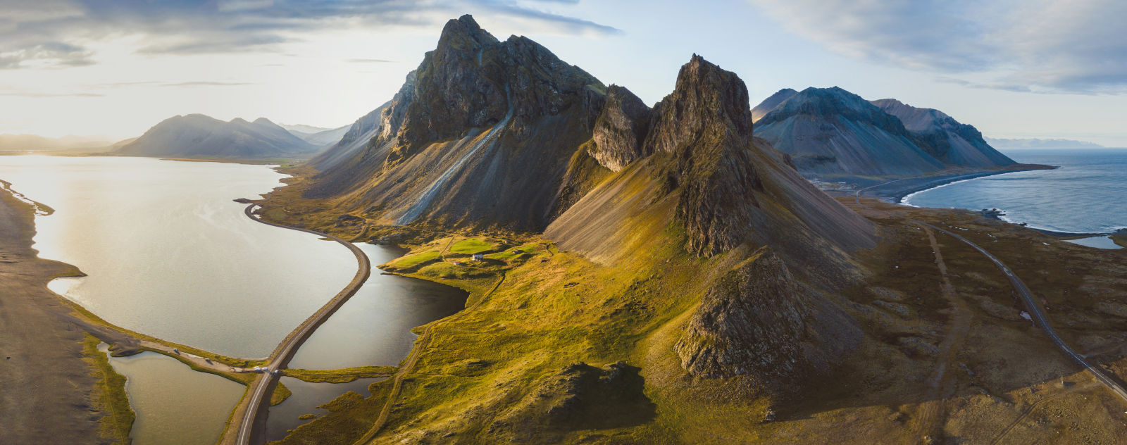 Bird, Iceland, Landscape