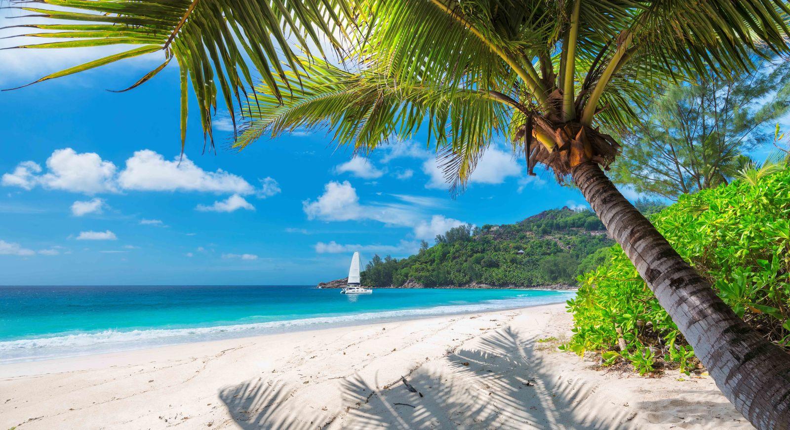 beach, jamaica