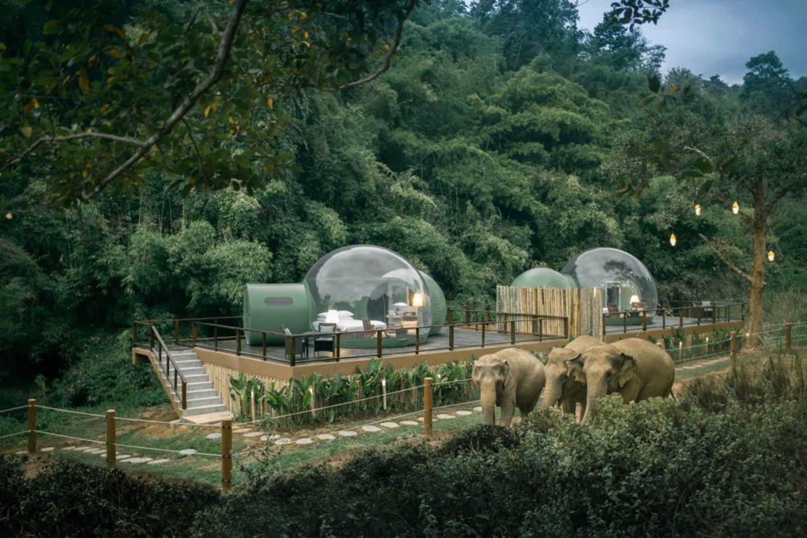 Anantara Golden Triangle Elephant Camp & Resort, booking.com