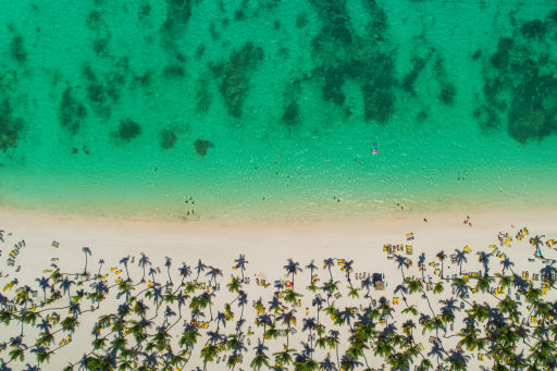 Price Drop on Dominican Republic Flights on American Airlines!