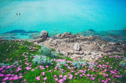 Sardegna, estate low cost in Gallura!