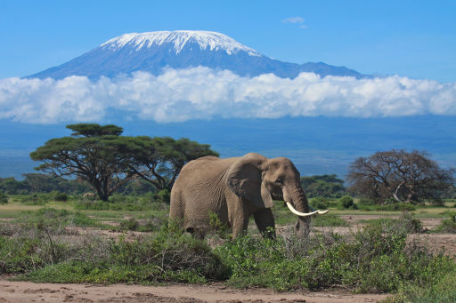 All inclusive in idyllisch Kenia