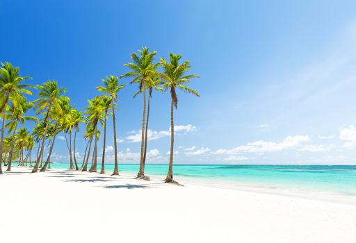 Viaje 5* TODO INCLUIDO a Punta Cana: resort, vuelos directos, traslados y más
