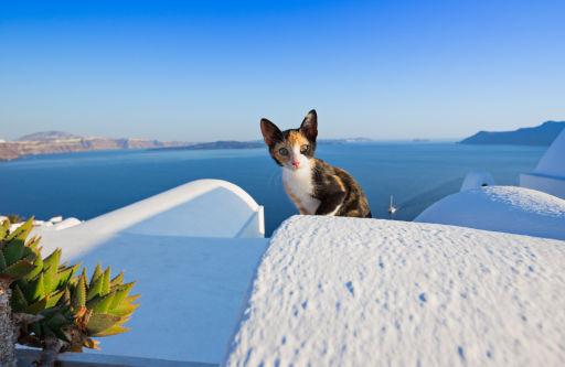 Si Si! Genieten doe je op Santorini!
