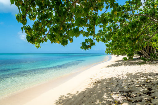 Vols vers les Antilles et l'Océan Indien à petit prix