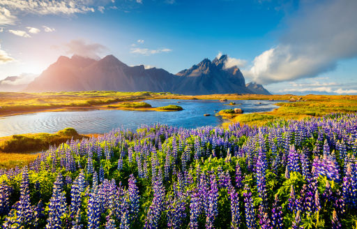 30% OFF! Return summer flights to Iceland from £55 pp
