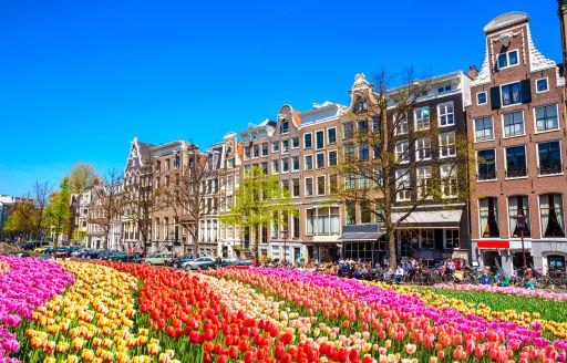 Big Price Drop on Amsterdam Flights