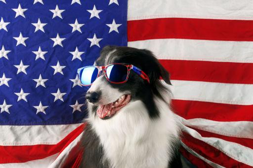 Finalmente America! Da novembre si torna a viaggiare verso gli Stati Uniti