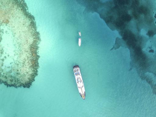 Crazy Cheap 4-Night Bahamas Cruise