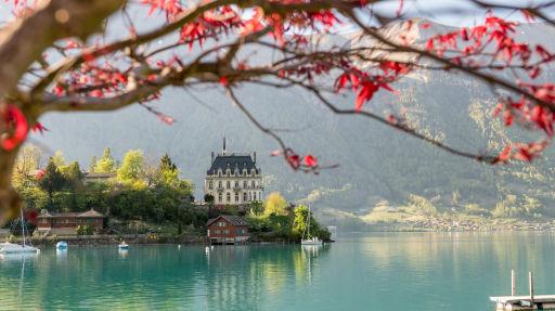 Schweizurlaub mit fast CHF 260 Ersparnis?!