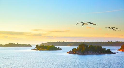 Mit Freunden auf einer schwedischen Insel