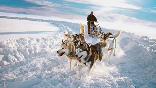 Abenteuer im Hohen Norden: Finnisches Lappland intensiv