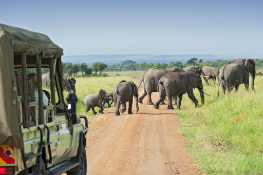 Vacation in Kenya this September