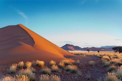 DEAL DES MONATS: Zweite Person reist gratis nach Namibia- 10 Tage inkl. Flüge, Jeep, Glamping, Hotels & mehr