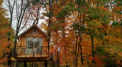 Upstate New York Treehouse
