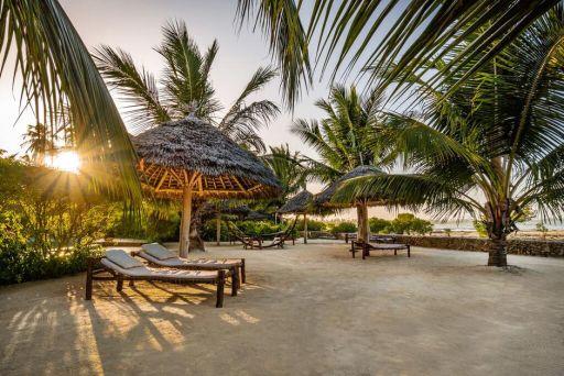 Tanie loty do Tanzanii (i na Zanzibar)