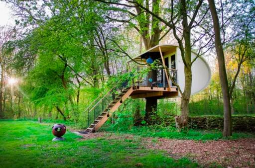 Overnachten in een boomhut in Flevoland!