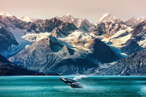Over 60% off Weeklong Alaska Cruises!