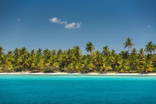 Over Half Off Nonstop Dominican Republic Flights on American Airlines!