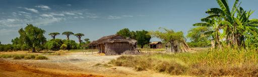 Prix imbattable pour Madagascar