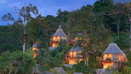 Phuket też ma swoje domki na drzewach