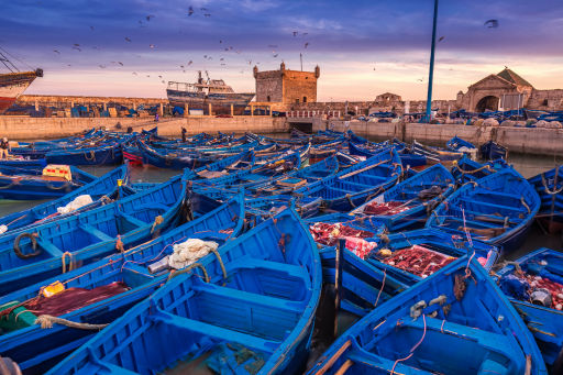Return flights to Morocco from ONLY £8!!