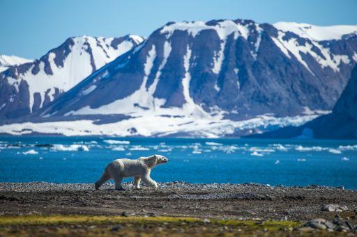 Once in a lifetime: Spitzbergen