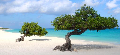 Fernreisetipp: Aruba
