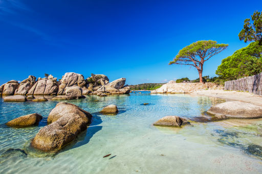 😎 Geheimtipp Korsika!