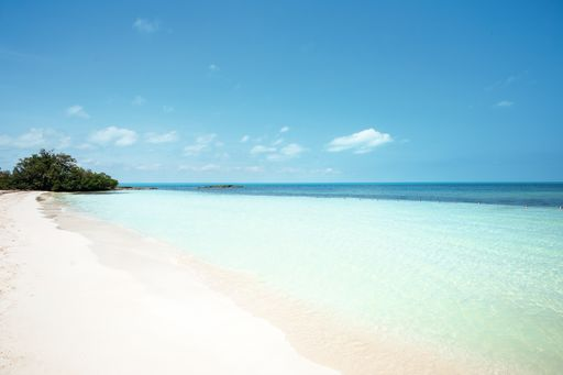 Save up to £200 OFF long-haul holidays with TUI