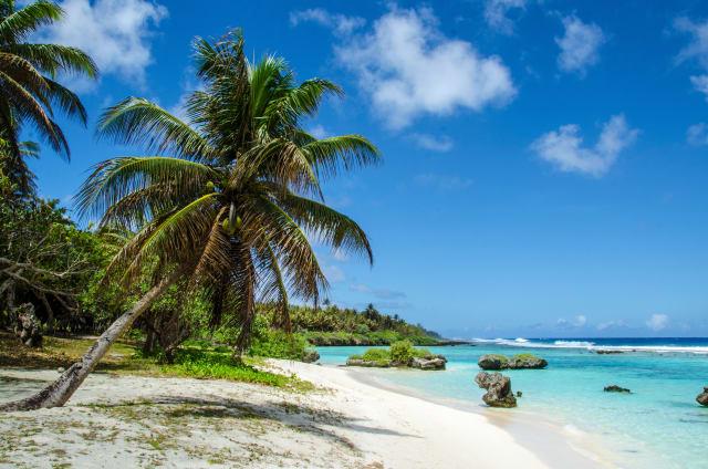 Tropischer Strand in der Südsee mit palmen