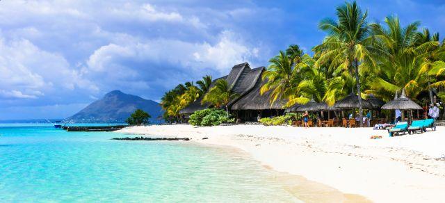 Mauritius Strand Paradies Palmen