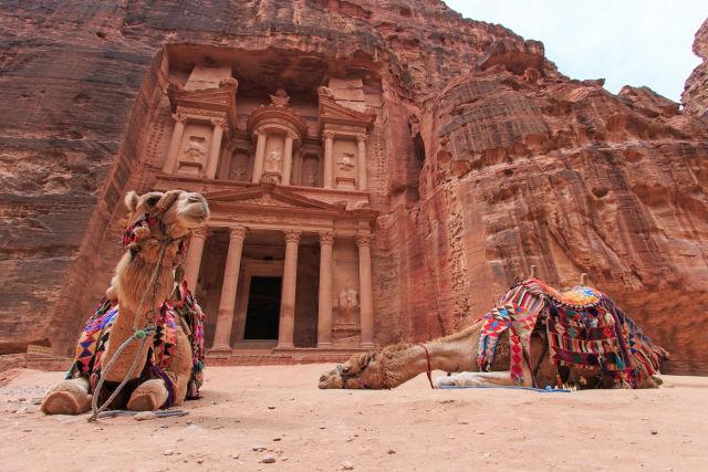 Kamele vor dem Eingang zu Petra