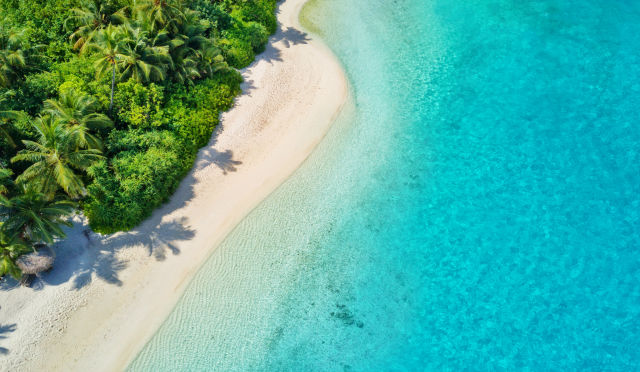 Malediven Strand palmen meer