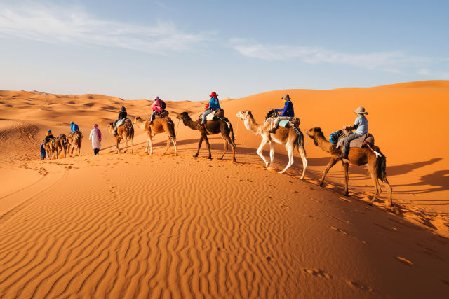 Kamelkarawane in Marokko, Sahara