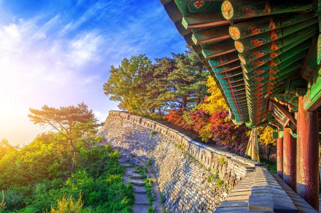 Gwangju Südkorea Tempel Baeume