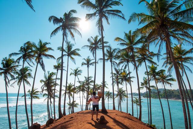 Pärchen auf Sri Lanka mit Palmen