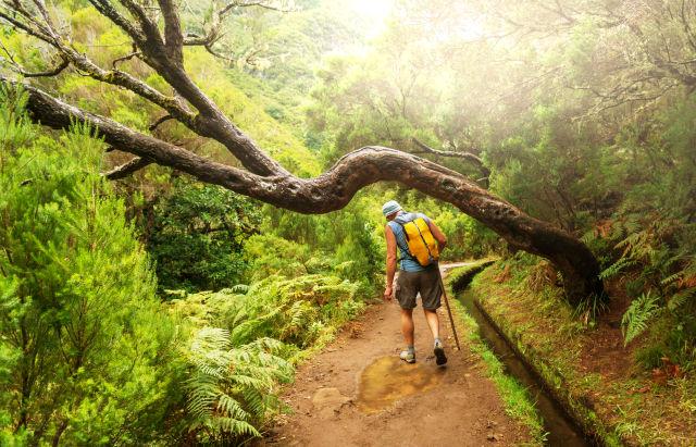 Mann beim Wandern auf Madeira Natur